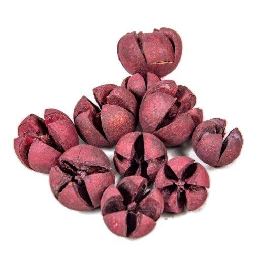 Bíborlila chiruni szárított termés